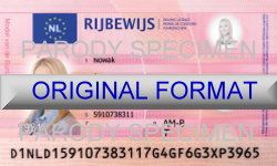 buy dutch fake id online