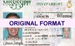 MISSISSIPPI DRIVER LICENSE ORIGINAL FORMAT, DESIGN SPECIFICATIONS, NOVELTY SECURITY CARD PROFILES, IDENTITY, NEW SOFTWARE ID SOFTWARE MISSISSIPPI driver